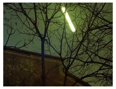 Insomnia 4; 2011.043