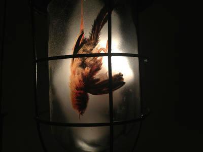 Seven Sparrows; 2012.066